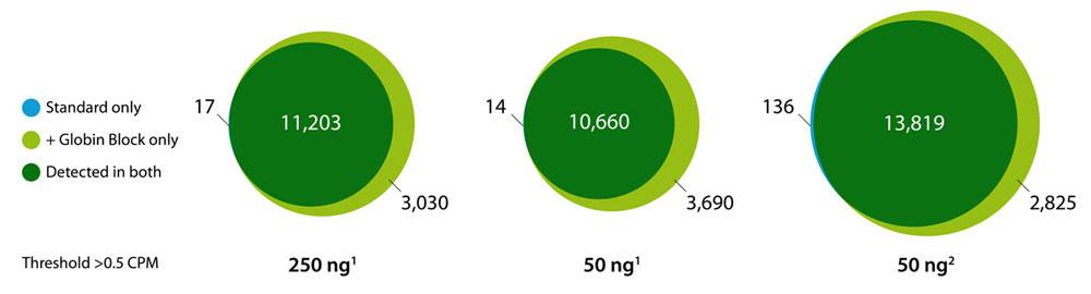 Fig.2-Globin-Block_1000px