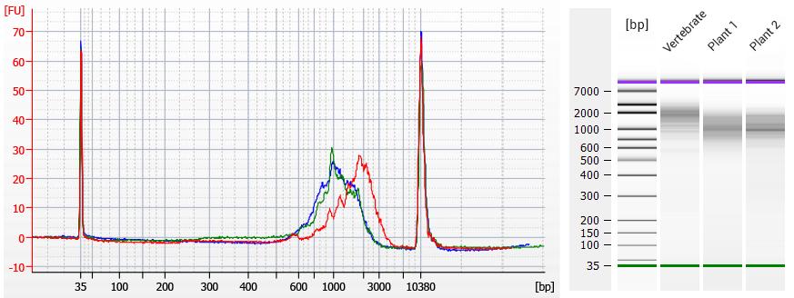 Vertebrate vs plant figure TeloPrime