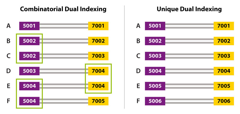 i5-dual-indexing-strategies