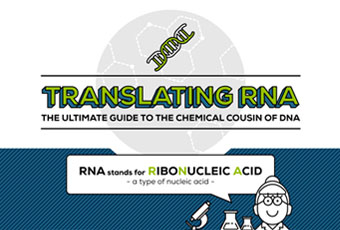 Translating-RNA-featured