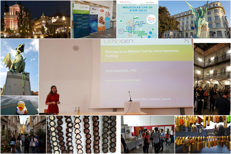 molecularlifeofstemcells_conference-collage