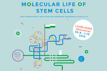 molecularlifeofstemcells_featured