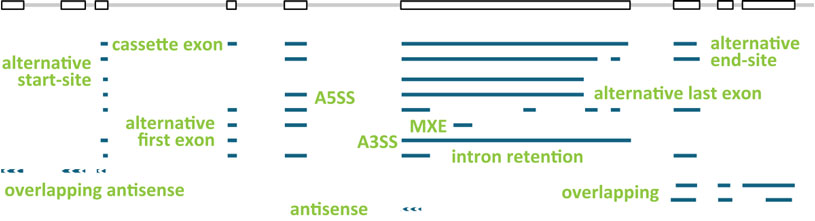 SIRV-Design_Figure3