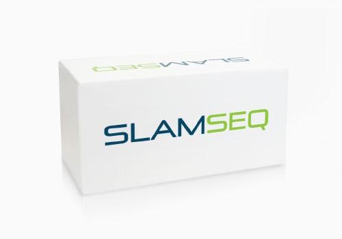 SLAMseq_500px