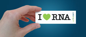 Lexogen_I_Love_RNA_Stickers