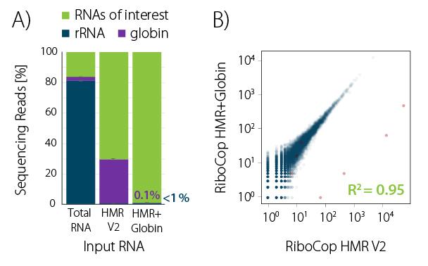 Fig_01 - RiboCop HMR plus Globin