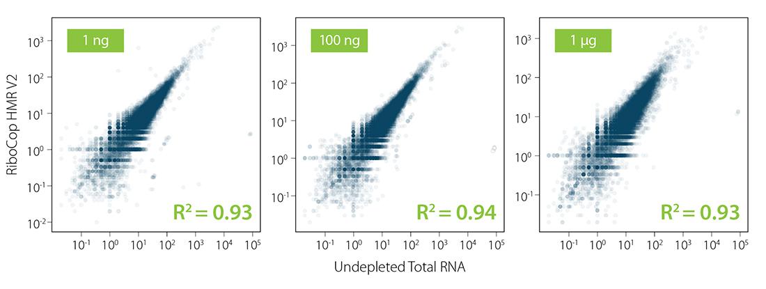 Fig_02 - RiboCop HMR V2