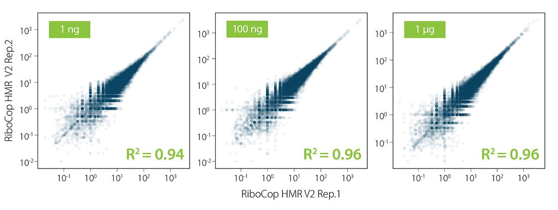 Fig_04 - RiboCop HMR V2