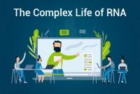 Complex Life of RNA 2020_Virtual Event_Blog Thumbnail