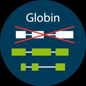 Lexogen-Sevices-Icon-Globin