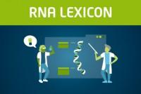 Lexogen_RNA-LEXICON_Announcement_Blog Thumbnail