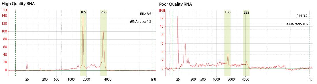 Lexogen_RNA-LEXICON_Chapter4_Graph-01
