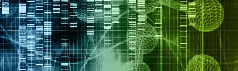 Lexogen_RNA-LEXICON_Photo-06