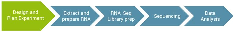 Lexogen_RNA-LEXICON_Chapter3_Graph-01