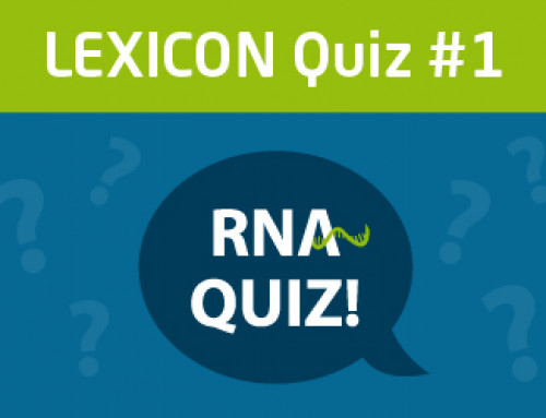 LEXICON Quiz #1 – Master all questions and win a limited-edition T-Shirt!